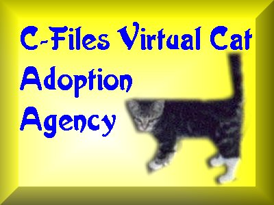 C-Files Virtual Cat Adoption Ageny