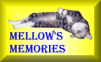 Mellow's Memories