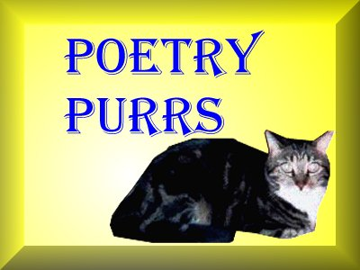 Poetry Purrs